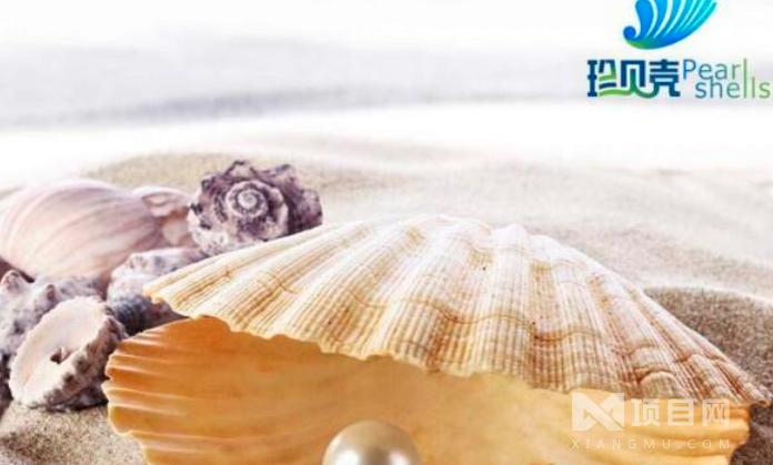 珍贝壳贝壳粉