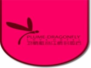羽蜻蜓音乐情侣主题酒店