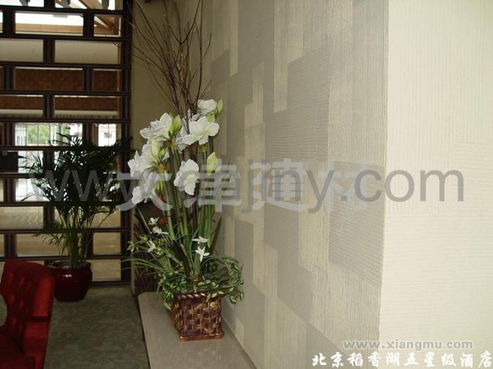大津硅藻泥生态壁材全国区域城市代理商招商加盟_3