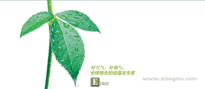 大津硅藻泥生态壁材全国区域城市代理商招商加盟_6