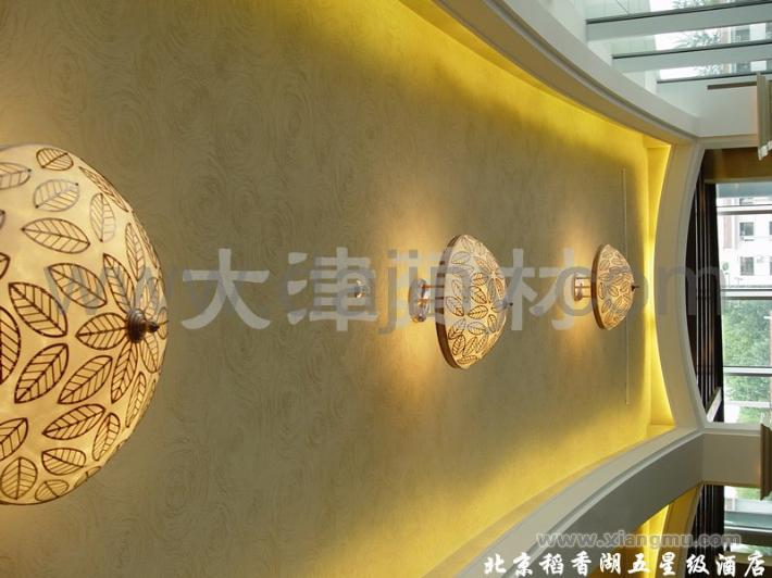 大津硅藻泥生态壁材全国区域城市代理商招商加盟_8