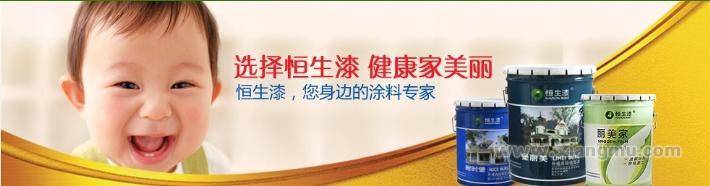恒生纳米环保涂料——中国涂料_1