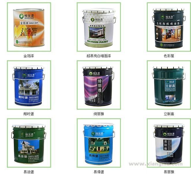 恒生纳米环保涂料——中国涂料_7