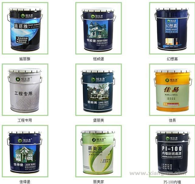 恒生纳米环保涂料——中国涂料_8