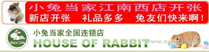 小兔当家宠物店加盟怎么样_小兔当家宠物店加盟费用_小兔当家宠物店加盟优势_2