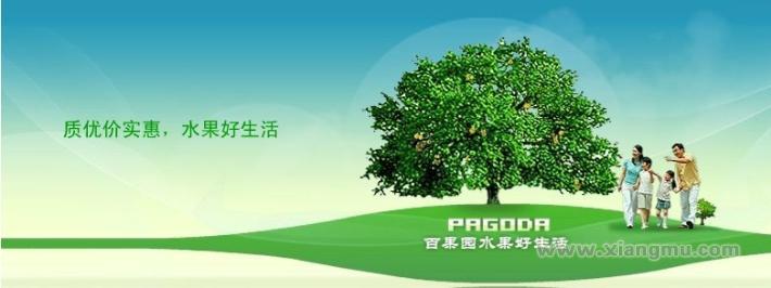 百果园水果专卖店加盟代理全国招商_2