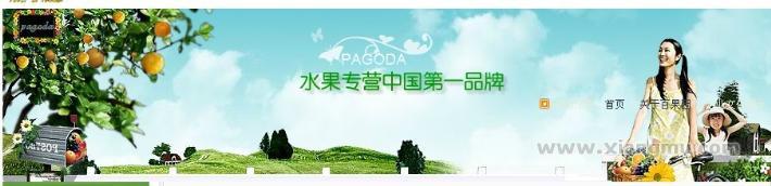 百果园水果专卖店加盟代理全国招商_4