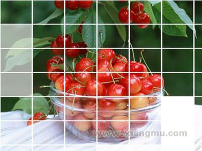 百果园水果专卖店加盟代理全国招商_3