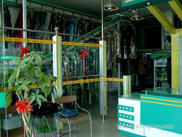 绿洲洗衣设备加盟代理全国招商_6