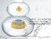 百年康宁苏打水