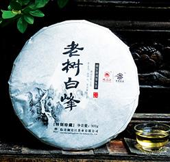 澜沧江老树白峰普洱生茶