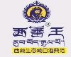 西藏蕃王工贸有限公司