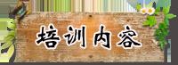 正宗奶茶培训(图)_6