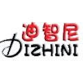 广州迪智尼文化传播有限公司
