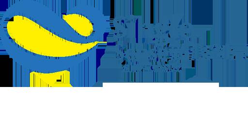 郑州新心创意信息科技有限公司