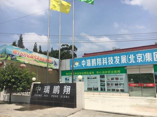 中瑞鹏翔科技发展(北京)有限公司成都分公司