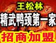 武汉松林精武食品有限公司