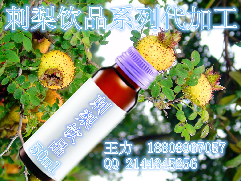 刺梨饮品OEM代加工|蓝莓酵素饮品厂家、30ml植物饮品OEM