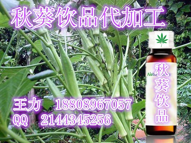 秋葵饮品灌装加工、30-50ml综合植物酵素代加工