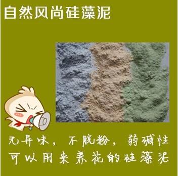 加盟自然风尚硅藻泥带您致富奔小康