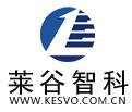 凯斯沃kesvo汽车自动防撞系统