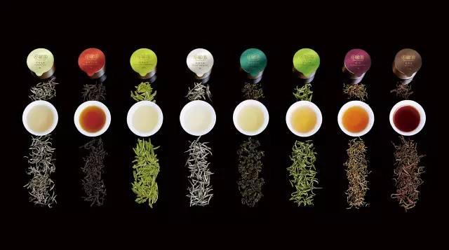 小罐茶加盟代理_小罐茶加盟条件费用_小罐茶加盟电话_1