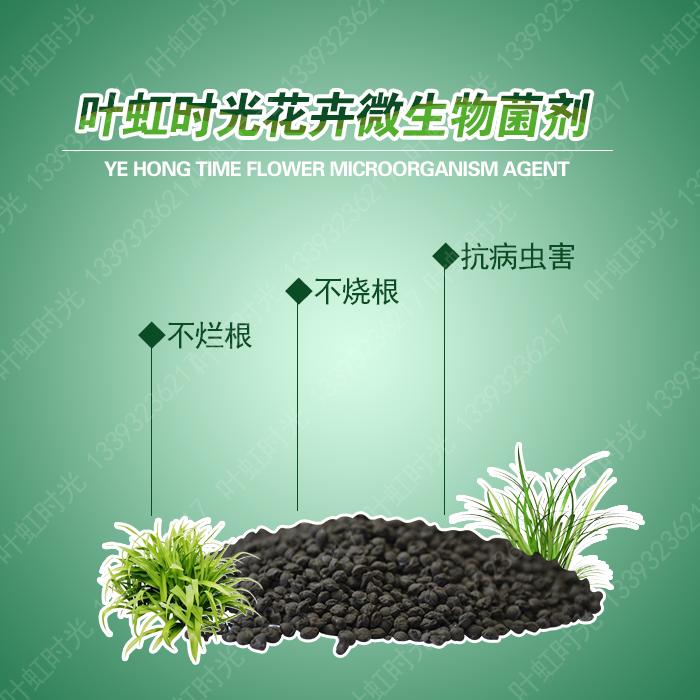 什么是微生物菌肥 土壤改良剂促进增产增收