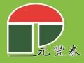 汕头市龙湖区元丰泰果蔬腌制厂