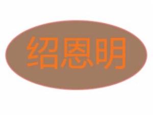 绍恩明黄焖鸡米饭餐饮有限公司