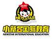 小新星国际教育