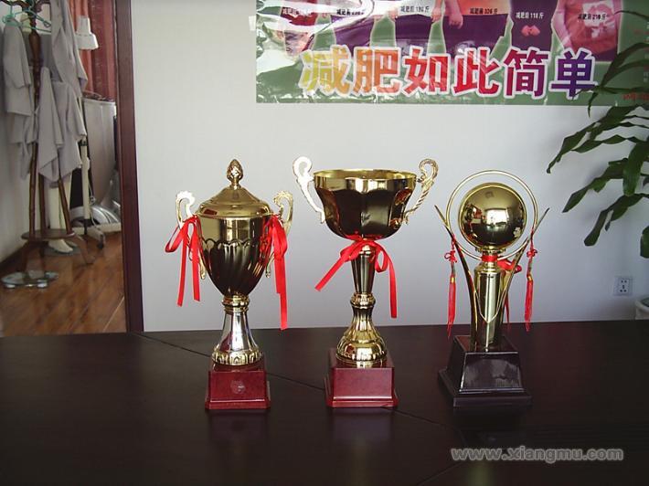 香港玛格丽莎瘦身减肥:创中国的世界名牌_20