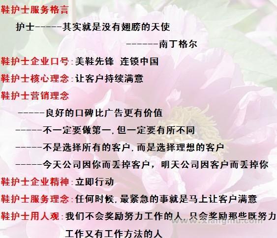 鞋护士美鞋坊连锁店:行业领导品牌_7