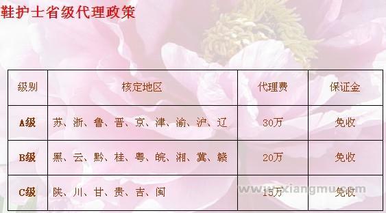 鞋护士美鞋坊连锁店:行业领导品牌_16