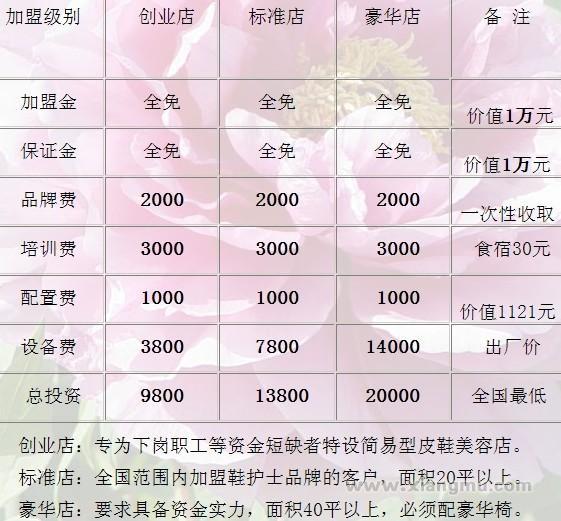 鞋护士美鞋坊连锁店:行业领导品牌_18