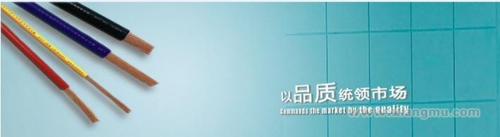 广顺五金电器连锁:打造行业典范_1
