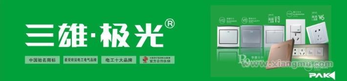三雄·极光照明:受欢迎电工电气品牌_13