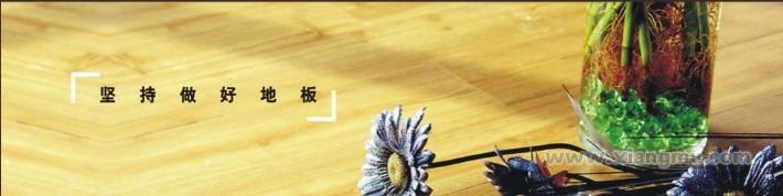 赛欧地板——中国著名品牌_3