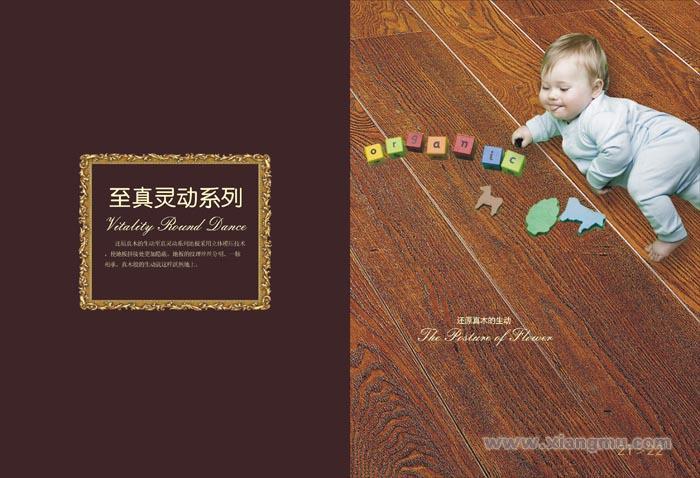 赛欧地板——中国著名品牌_14
