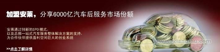 安莱汽车美容装饰:中国汽车后市场的航母企业_1