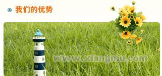 鼎育人远程教育学习网:中国远程教育十大影响力品牌_14