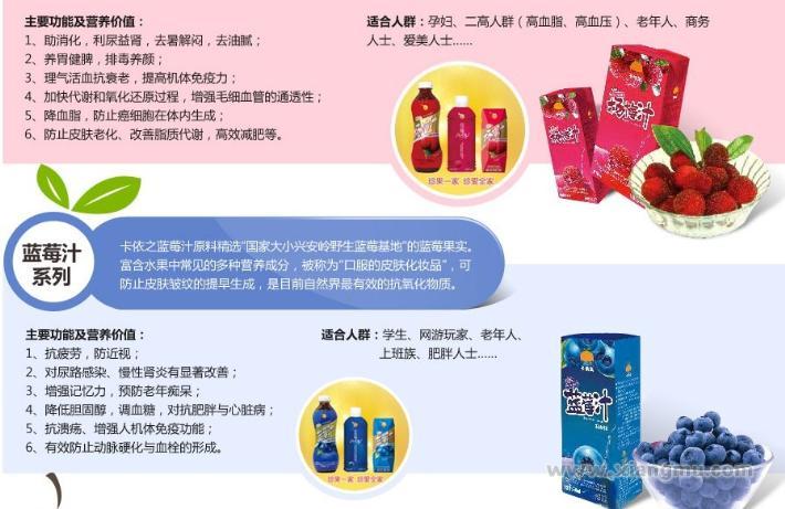 卡依之果汁招商代理诚征全国经销商_4