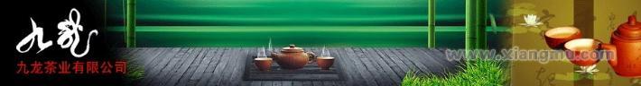 九龙茶业加盟连锁店全国招商_1