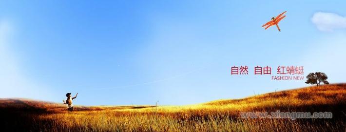 红蜻蜓皮鞋加盟代理全国招商_1