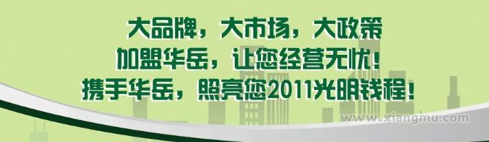 华岳无极灯加盟代理全国招商_9