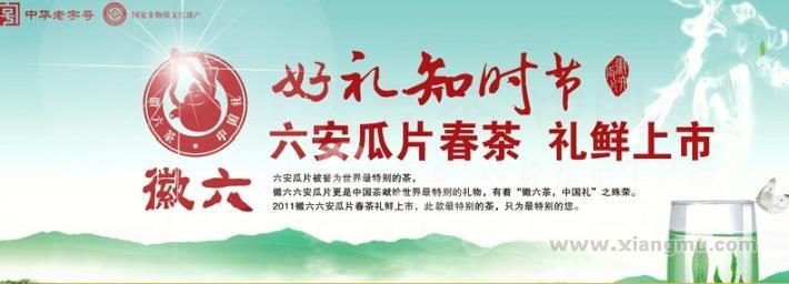 徽六六安瓜片茶叶加盟代理全国招商_4