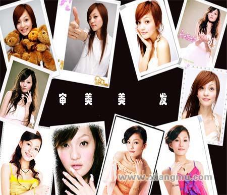 审美美发:中国美发界品牌_4