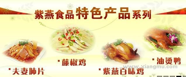 紫燕百味雞熟食招商加盟_2