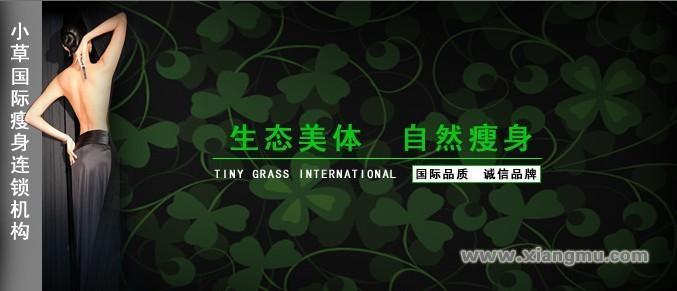 香港小草瘦身连锁机构:中国市场代理品牌_1