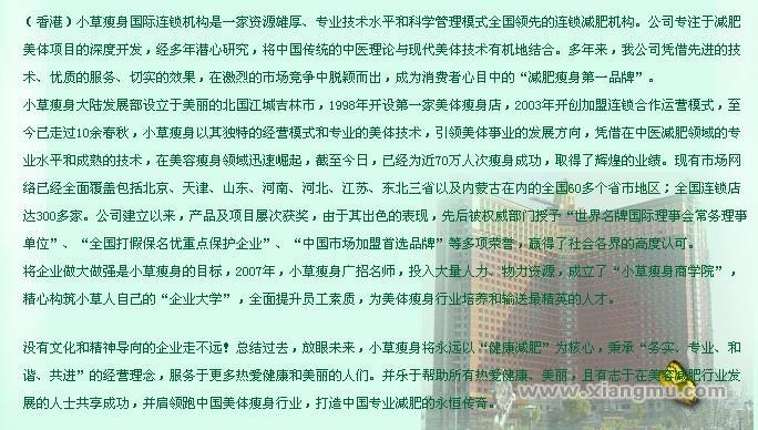 香港小草瘦身连锁机构:中国市场代理品牌_2