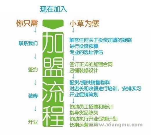 香港小草瘦身连锁机构:中国市场代理品牌_16